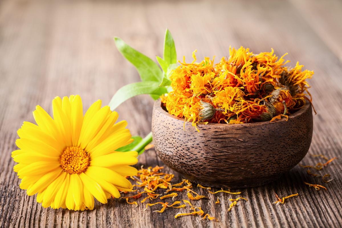 Цветы календулы на деревенской сковороде